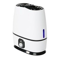 Everlasting Comfort Ultrasonic Humidifier (6L)